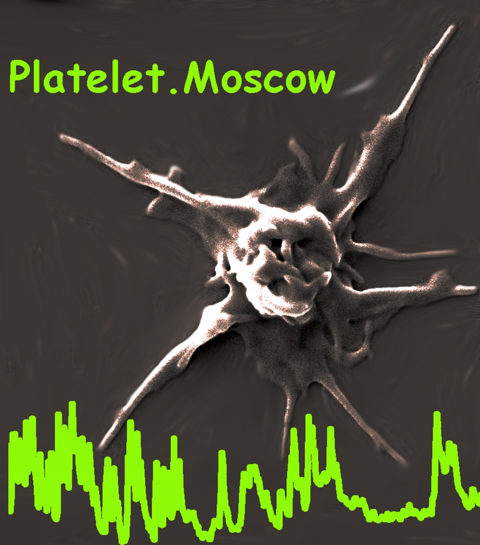 Platelet Systems Biology Team, Moscow, Russia